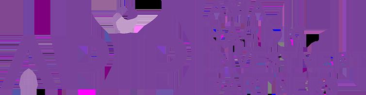 apip logo